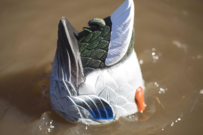 MOJO Outdoors MOJO Butt Up Rippler Motorized Duck Decoy